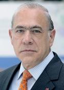 Imagen de Excmo. Sr. D. José Ángel Gurría Treviño